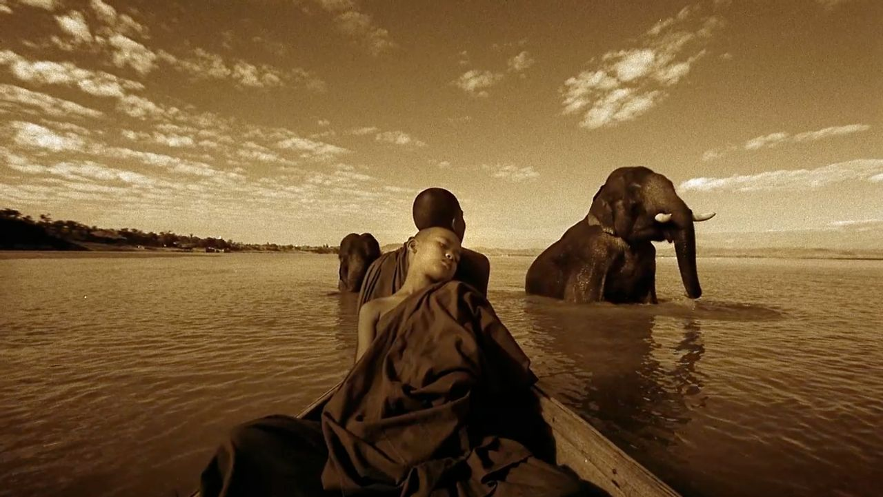 Stunning Video Features Beautiful Moments Between Humans and Animals