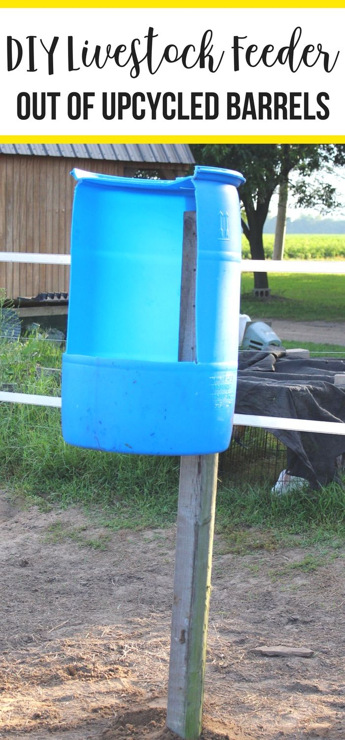 detail high a plastics item horses ct feeder horse country for slow buckets feeders saver