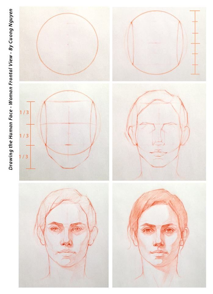 Drawing the human face - Woman frontal view - By Cuong Nguyen | art ...