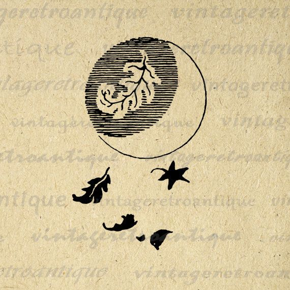 Printable Image Moon and Leaves Graphic Illustration Digital Download Vintage Clip Art. Printable high quality digital graphic for transfers, making prints, pillows, and more great uses. Real antique art. This digital image is high quality at 8½ x 11 inches large. Transparent background version included with every digital image.