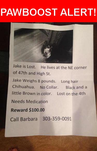 Please spread the word! Jake was last seen in Denver, CO 80216.    Nearest Address: Near High St & E 47th Ave