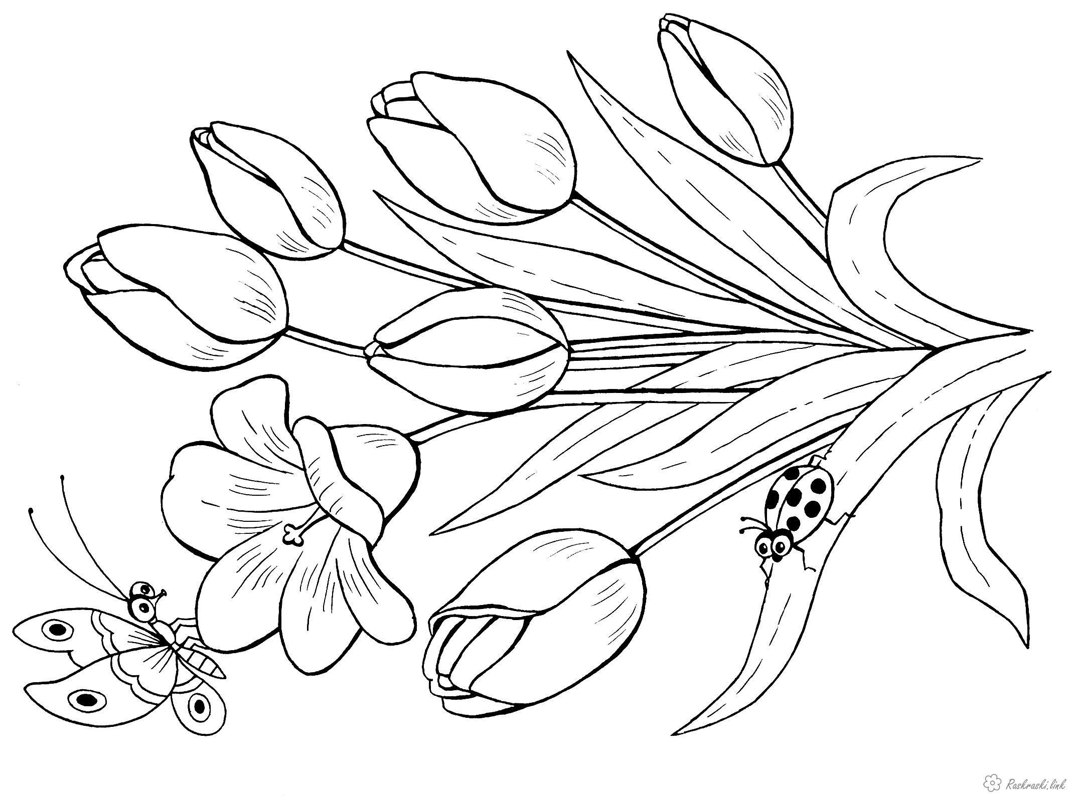 Раскраски Раскрасить цветы Детская раскраска цветы ...
