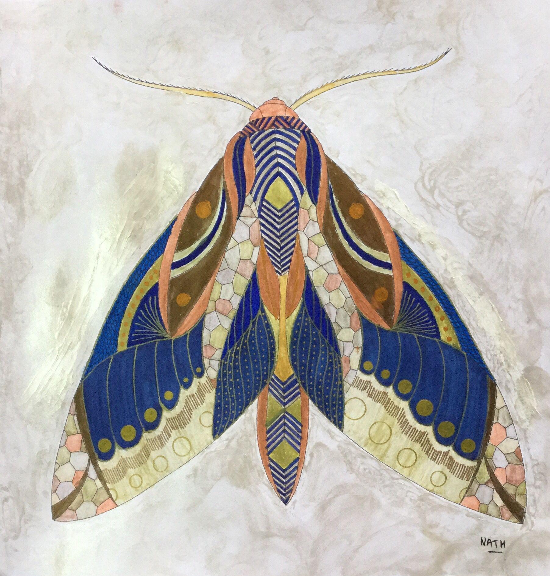 My Colouring Millie Marotta Animal Kingdom Moth Butterfly Mite Papillon