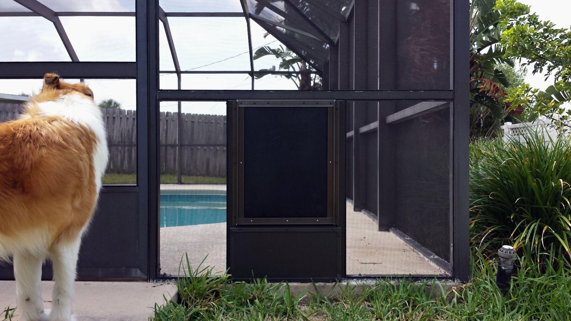 Pool enclosure screen door thefallguyediting pinterest