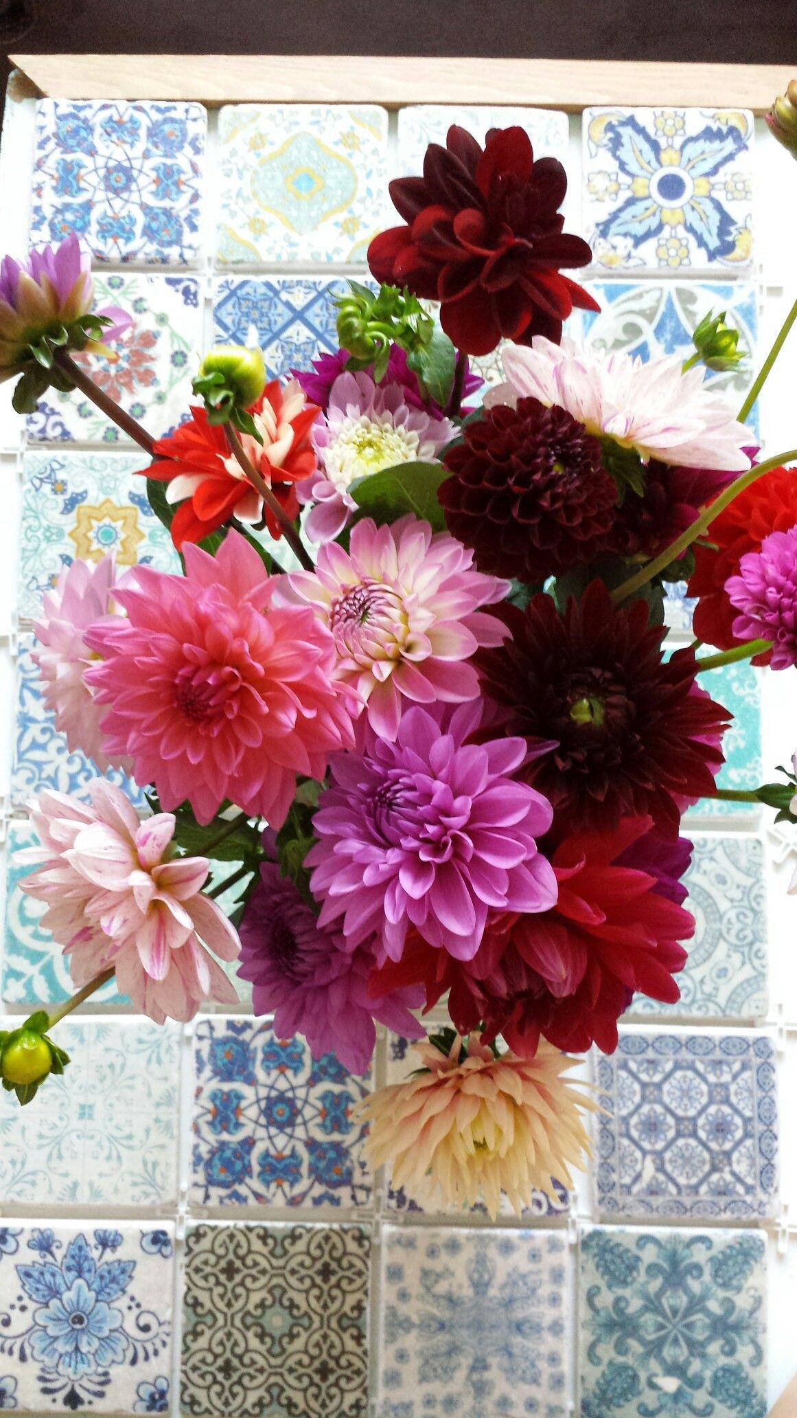 Blumen auf gemusterten Fliesen