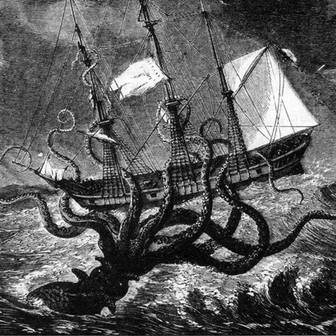 Pin by John Trepp on the space between Kraken, Kraken