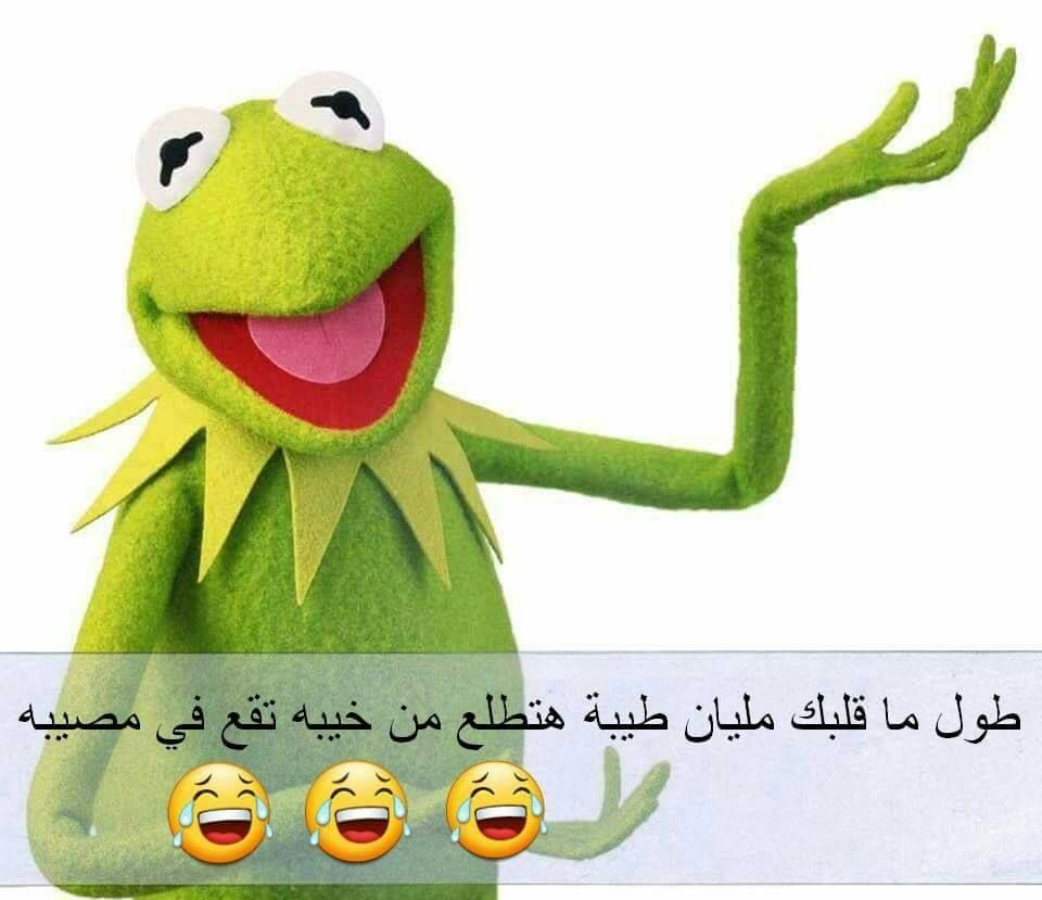 الطيبة خيبة Funny Dude Funny Comments Funny Arabic Quotes