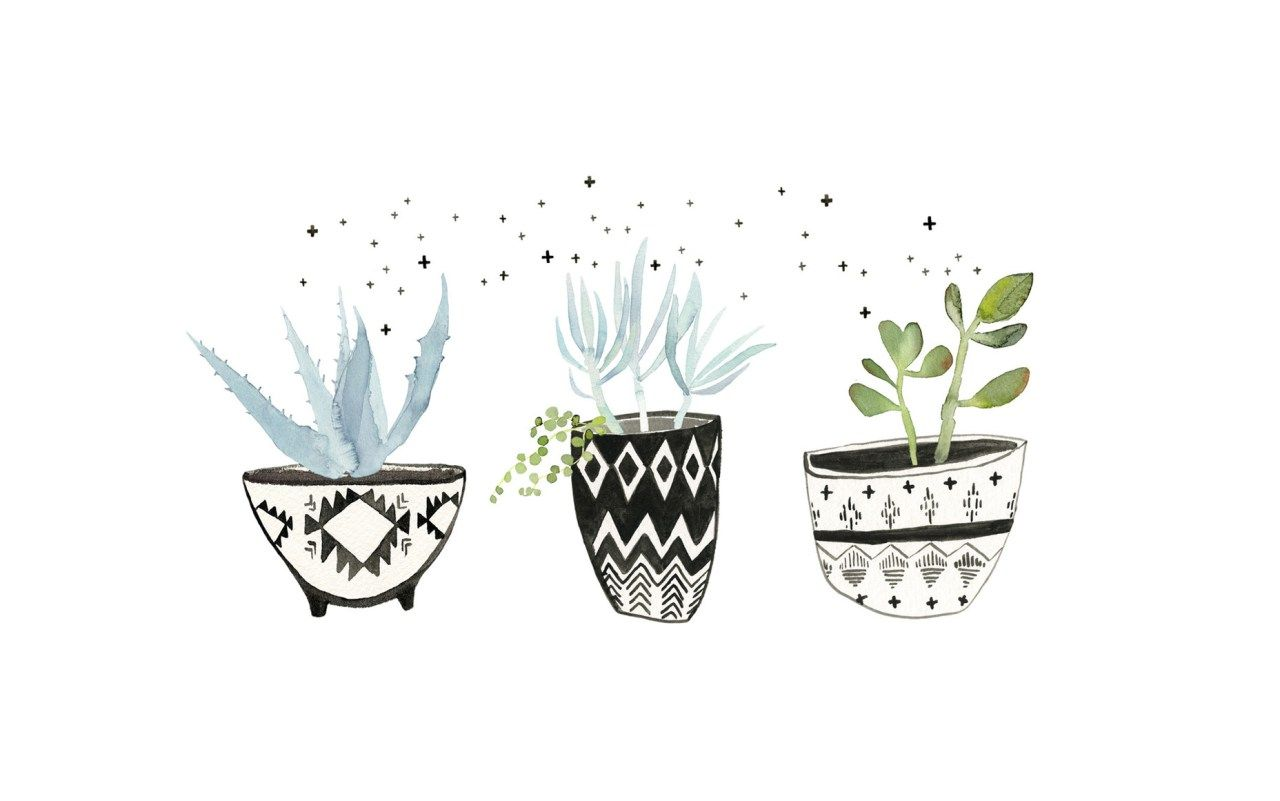 Succulents 30 Free Beautiful Watercolor Wallpapers That Should Be