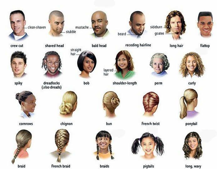 Hair and the different types learning English | Learning English ...