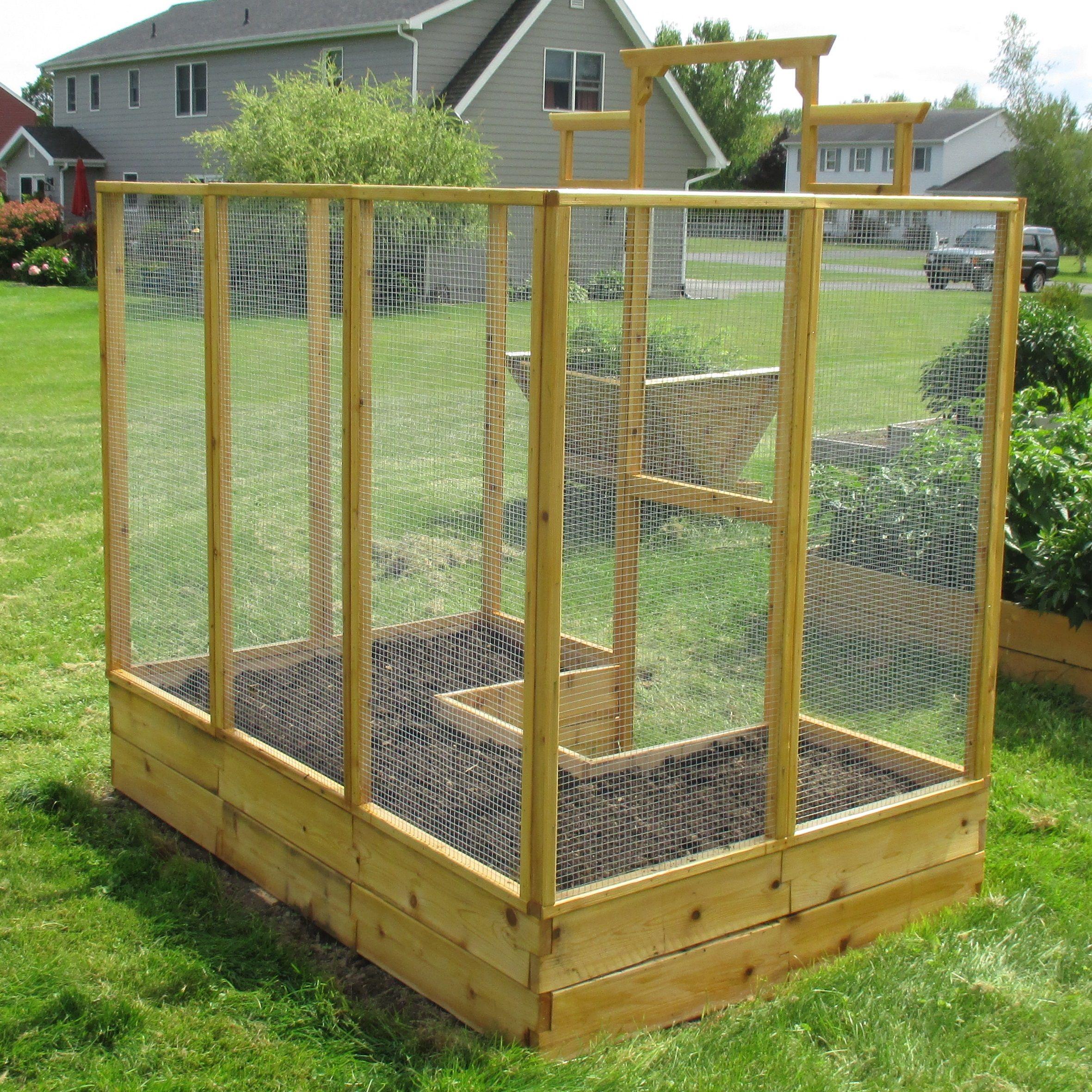 Deer Proof Raised Bed Garden Kit Garden beds, Raised