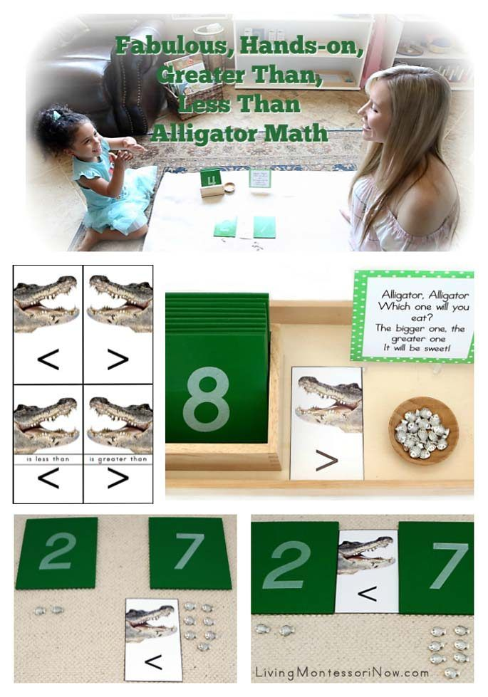 Fabulous Hands On Greater Than Less Than Alligator Math Tube
