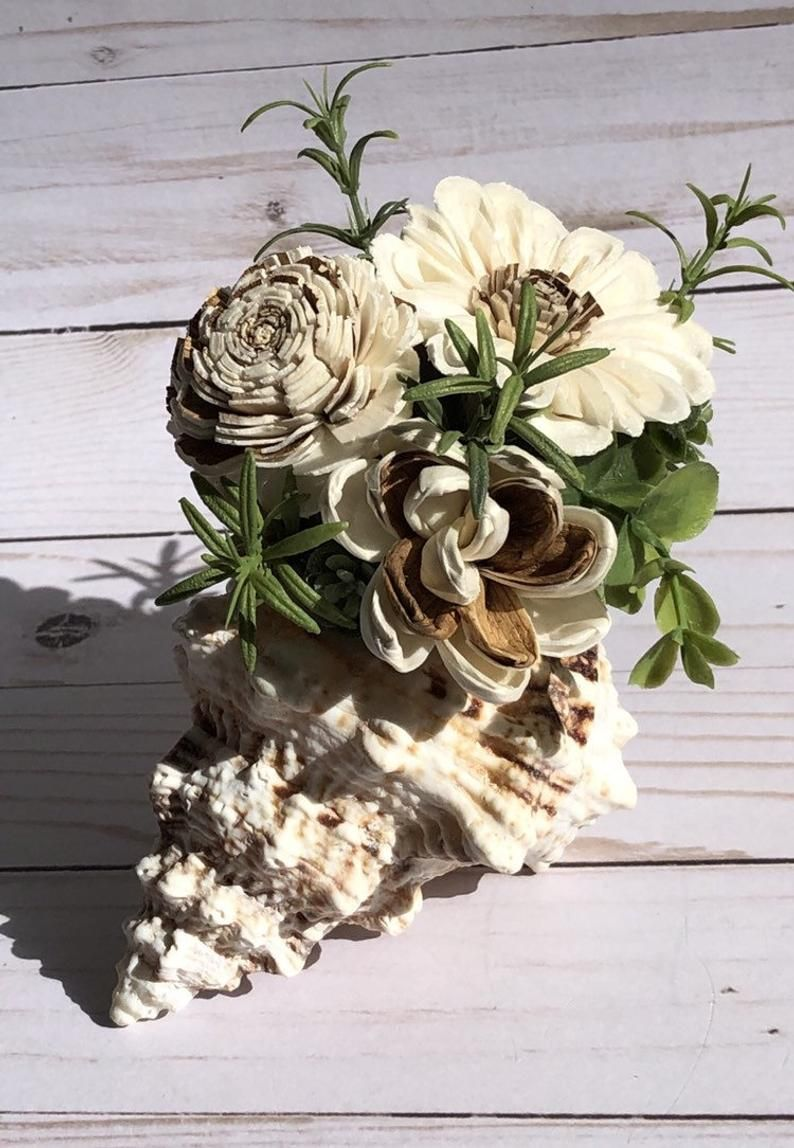 Pin by lori galonska on conch sola wood (With images