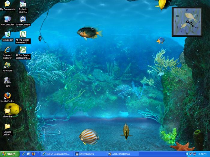 Bing Wallpaper Collection Free Download Aquarium Gif Wallpaper