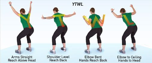 Image result for y t w l exercises
