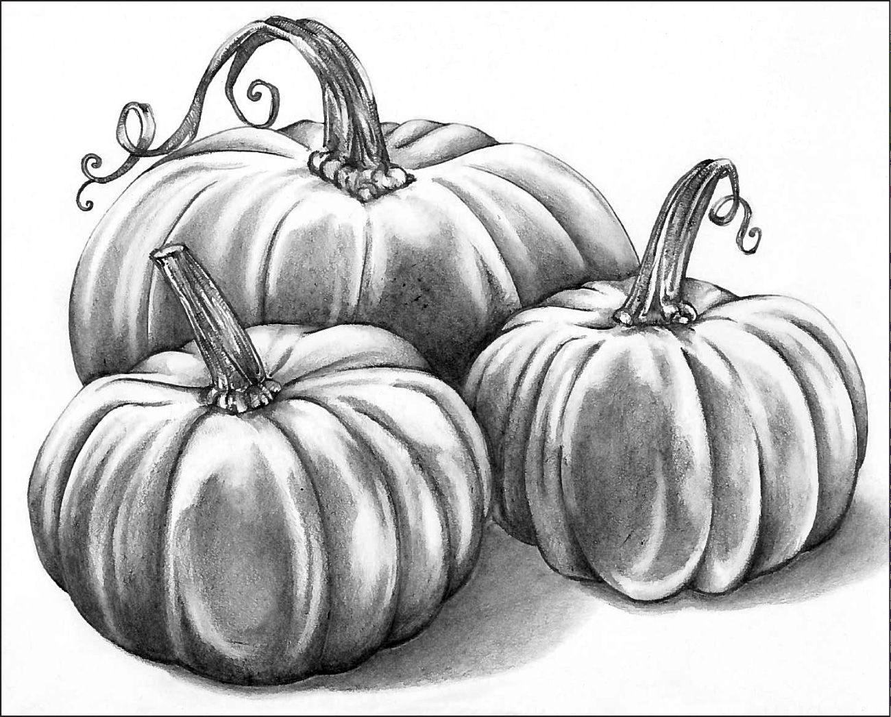 Graphite Pencil Pumpkin Patch Fall drawings, Pumpkin