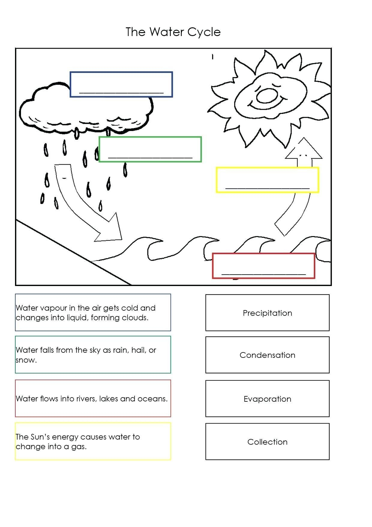 Water Cycle Worksheets 5th Grade the Water Cycle Worksheets Water Cycle Worksheet  for Grade 4   Water cycle worksheet [ 1754 x 1240 Pixel ]