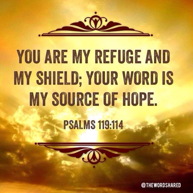You are my refuge and my shield; your word is my source of hope. ~Psalms 119:114 #Scriptures #WordOfGod #TheWordShared