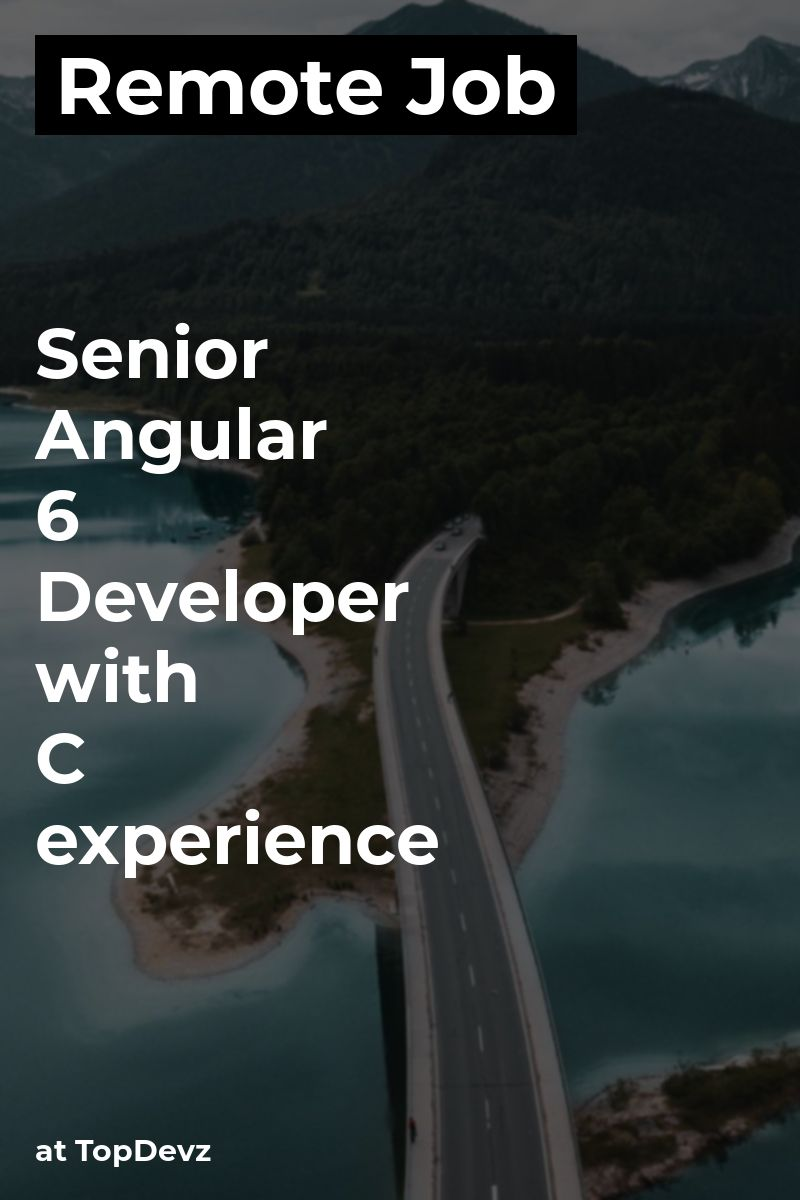 Remote Senior Angular 6+ Developer with C# experience at