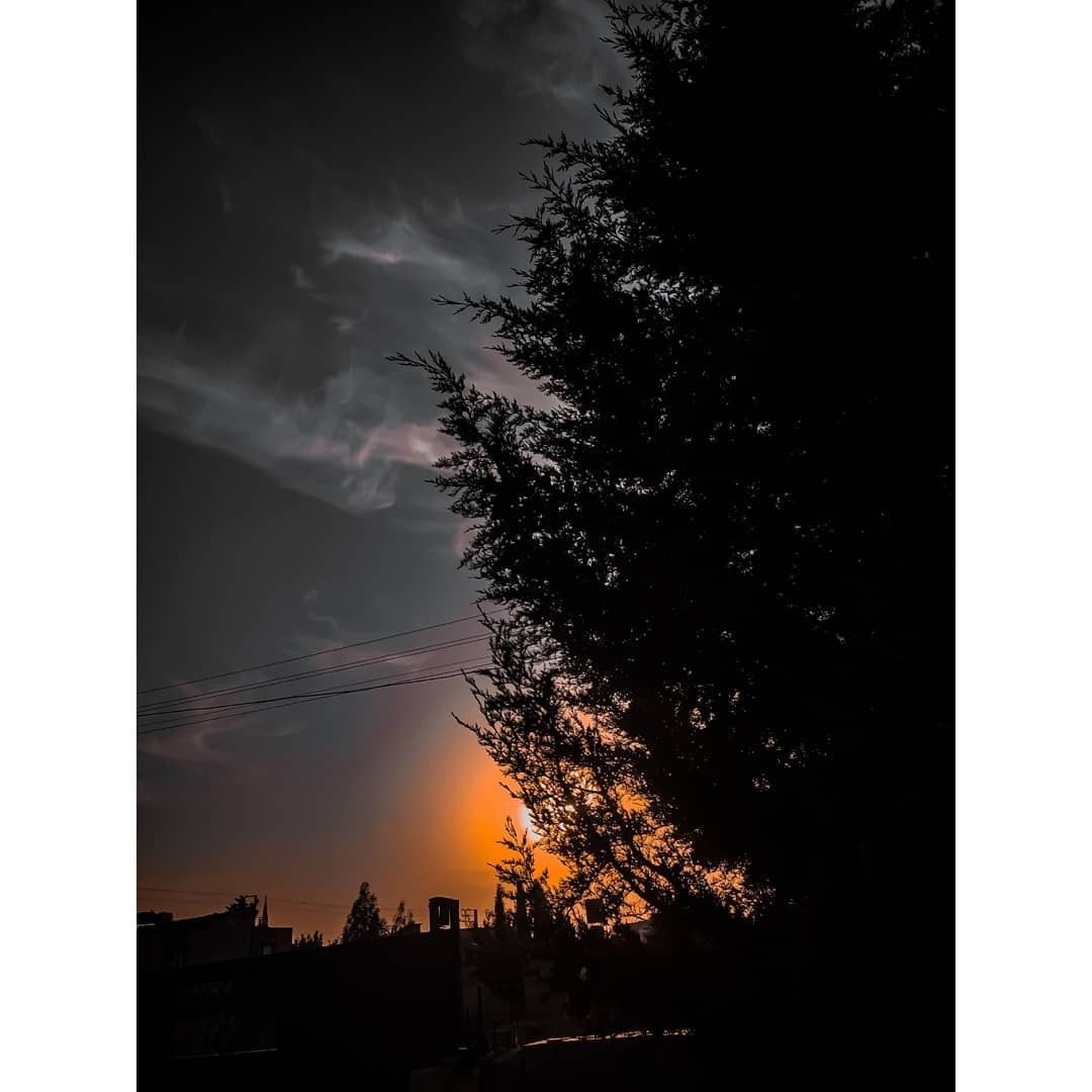 ك ـن انت تصنعك لا يزيدك الا قبحا صور خلفيات صور مناظر اشجار افتارات انستا صور انستا