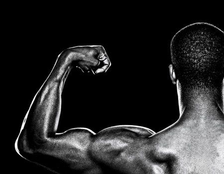 how to build your biceps