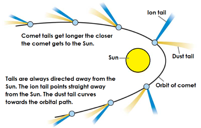 Diagram Of A Comet Orbiting The Sun Both Tails Get Bigger The