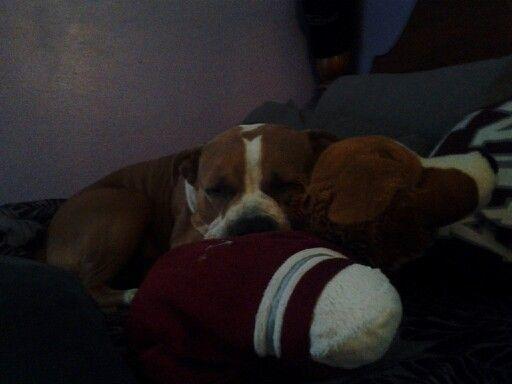 Someone is sleepy