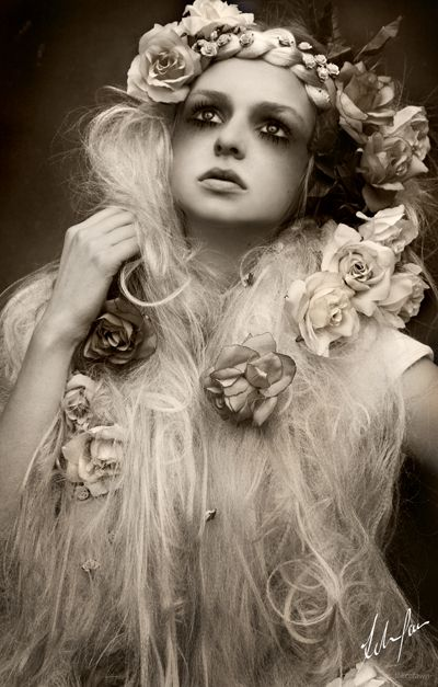 Felice Fawn photography, I must check out more of her photographs!