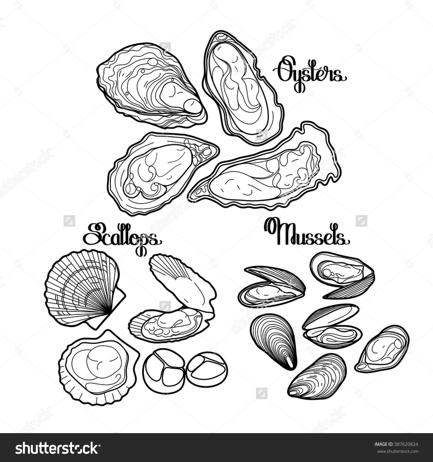 Oysters Image By Heather Sansky Mussels Oysters Drawings
