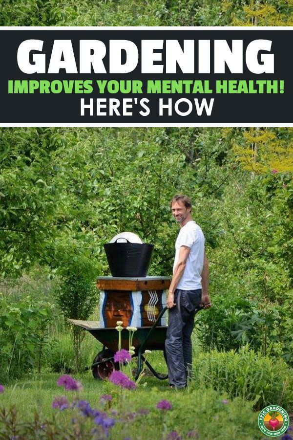 Improve Your Mental Health By Gardening Benefits of