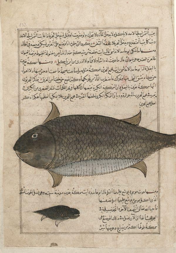 Arts of the Islamic World | Folio from a Aja'ib al ...