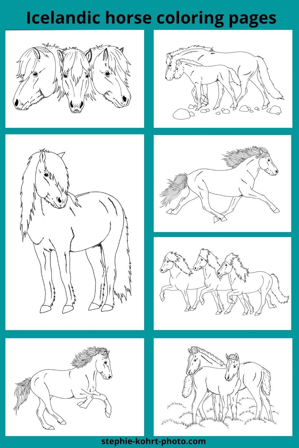 Icelandic Horses Coloring Pages Pdf Download Horse Coloring Pages Horse Coloring Coloring Pages