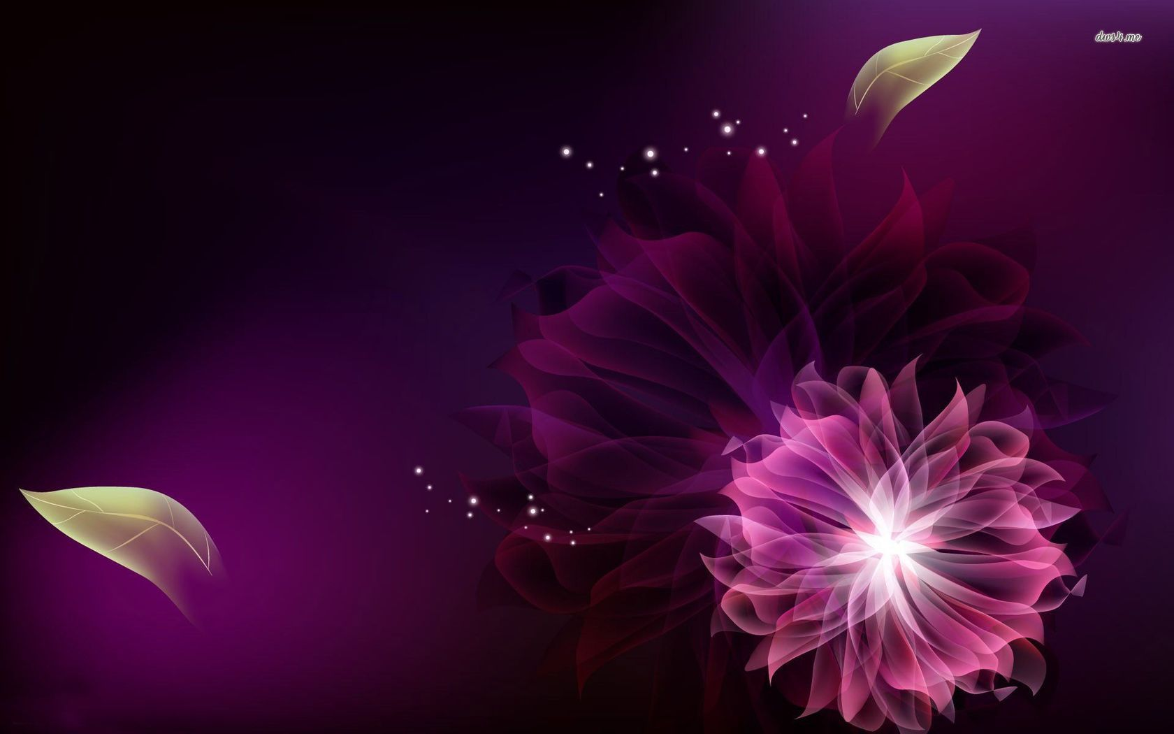 7013 purple flower 16801050 abstract wallpaper fiore rouge 7013 purple flower 16801050 abstract wallpaper thecheapjerseys Choice Image
