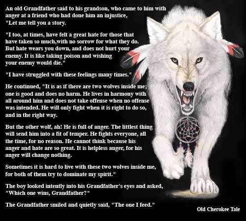 Native American Wolf Spirit Guide- great tale  What you feed is what