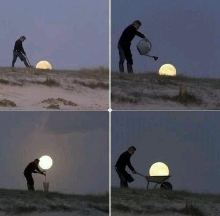 Growing a Moon