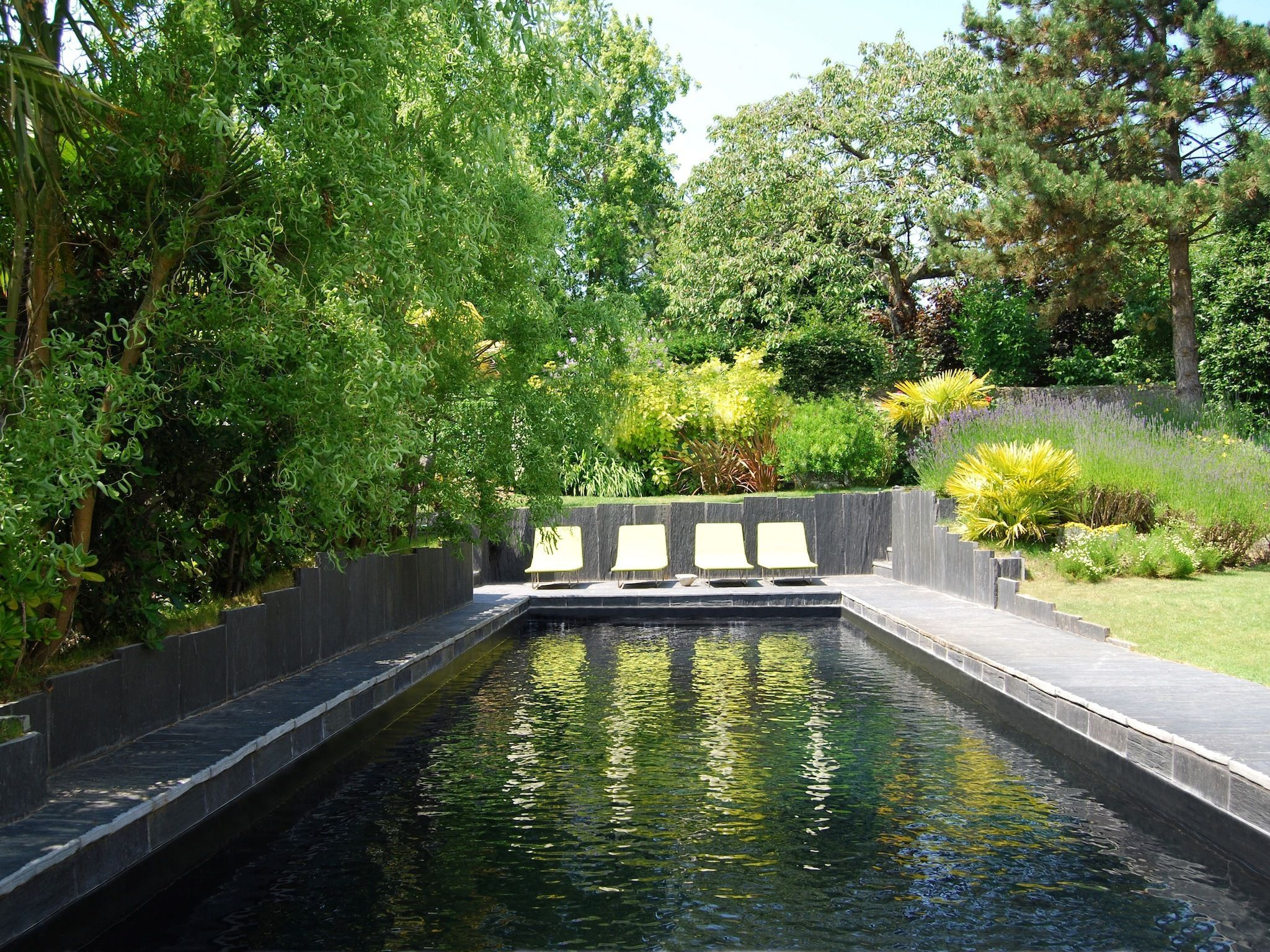 L esprit nature par l esprit piscine 10 x 3 5 m Revªtement noir