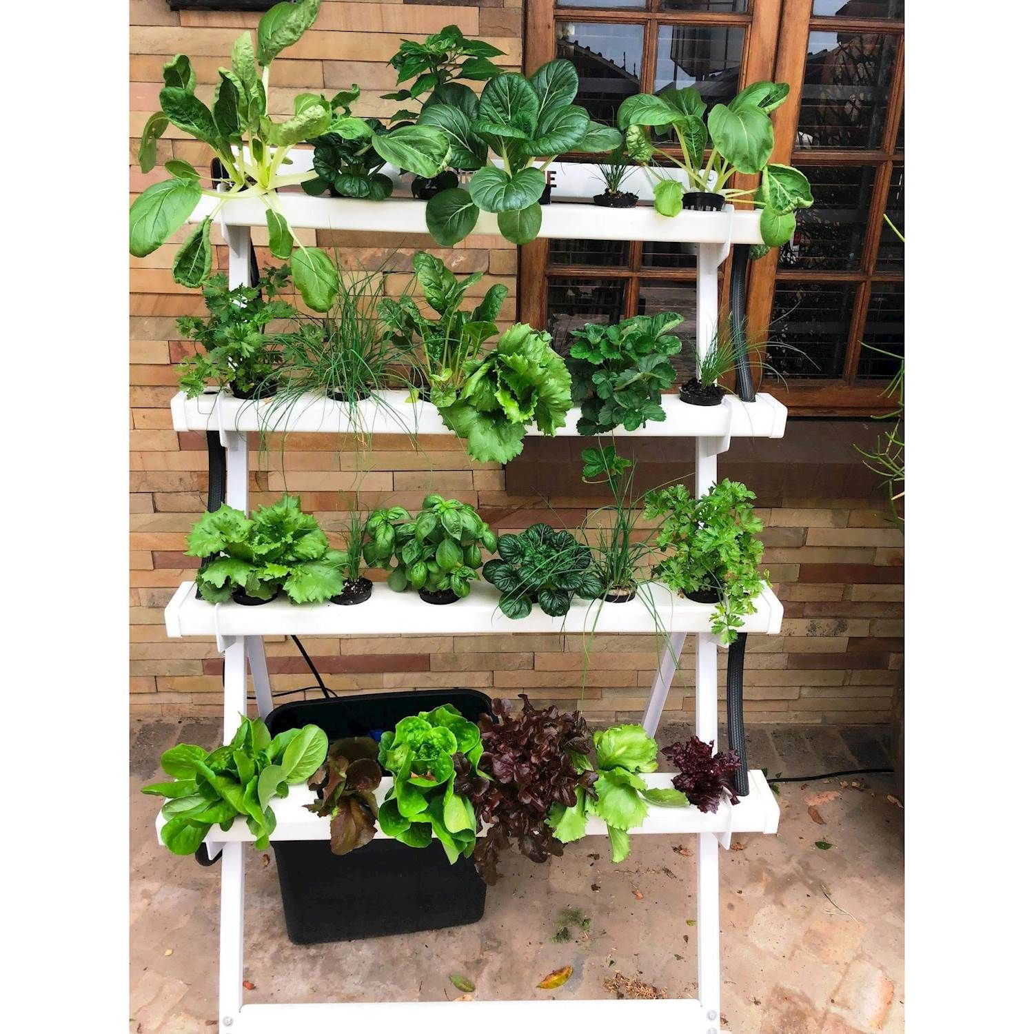 Hydroponic Home System 1 Lowest Prices Specials Online Makro