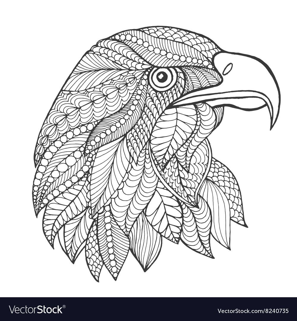 Eagle Head Adult Antistress Coloring Page Vector Image On Bird