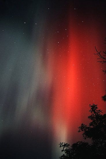 Aurora Australis by Peter Daalder  Recorded during the solar maximum in 1991.  The Southern Cross is near the top of the image.