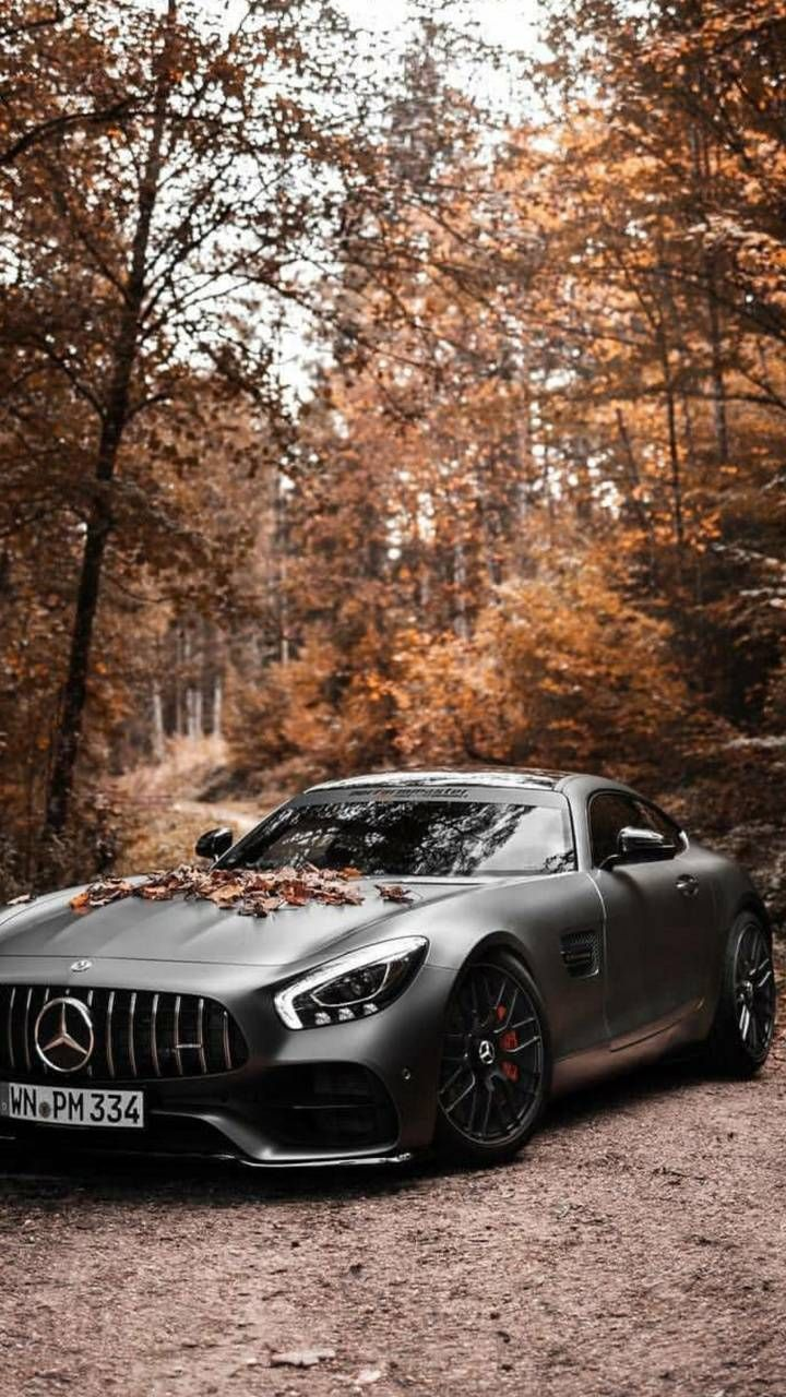 Download Autumn Amg Gt Wallpaper By Abdxllahm Ae Free On Zedge Now Browse Millions Of Popul Mercedes Wallpaper Mercedes Benz Wallpaper Mercedes Benz Cars Mercedes amg gt s roadster 2019 4k
