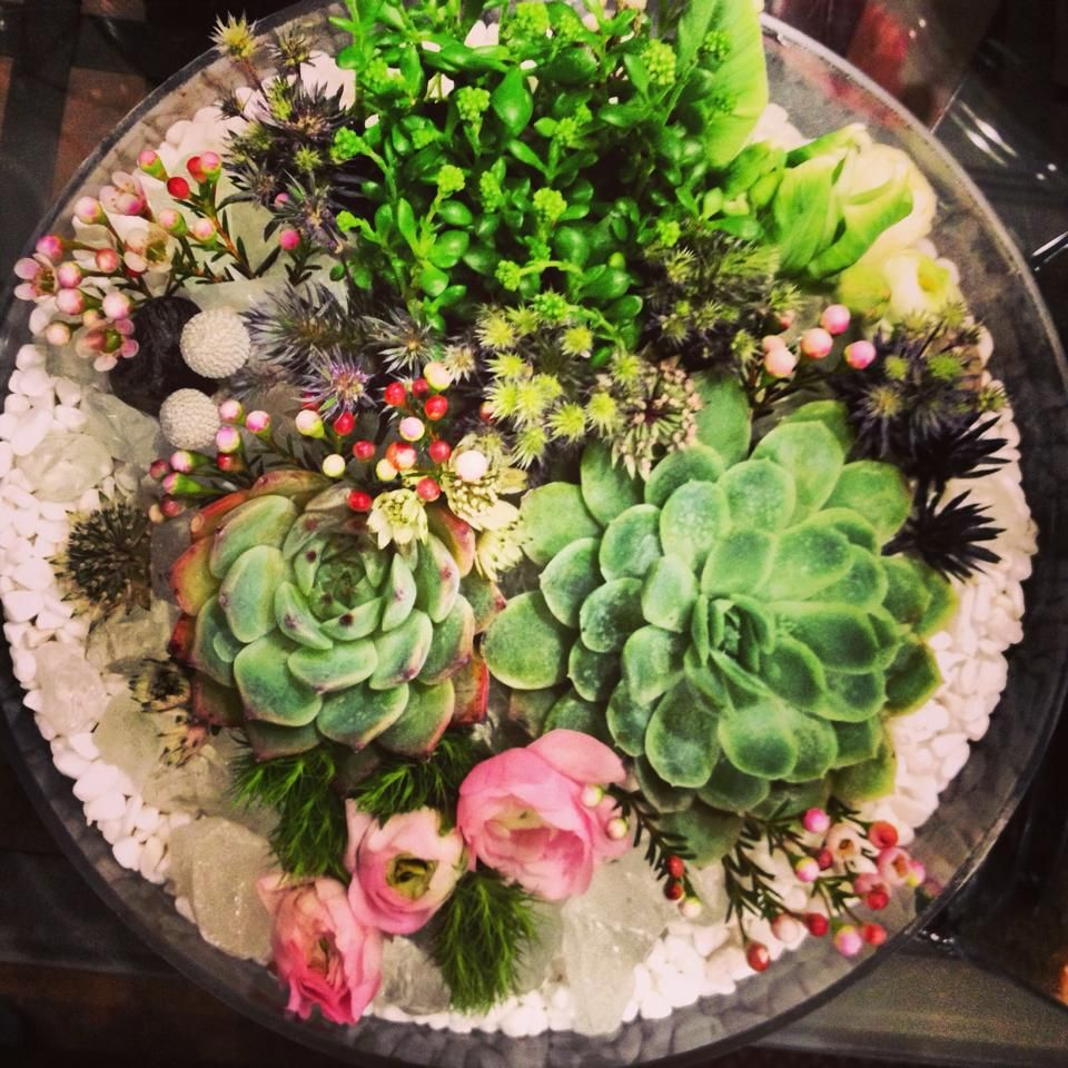 The terrarium as wedding centerpiece. Succulent
