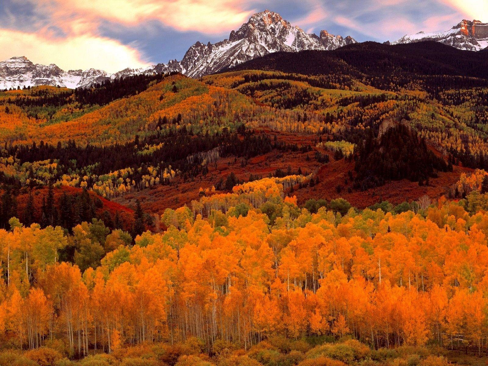 Autum Fields Beauty Earth Landscape Photography Nature Colorful Landscape Nature Photos
