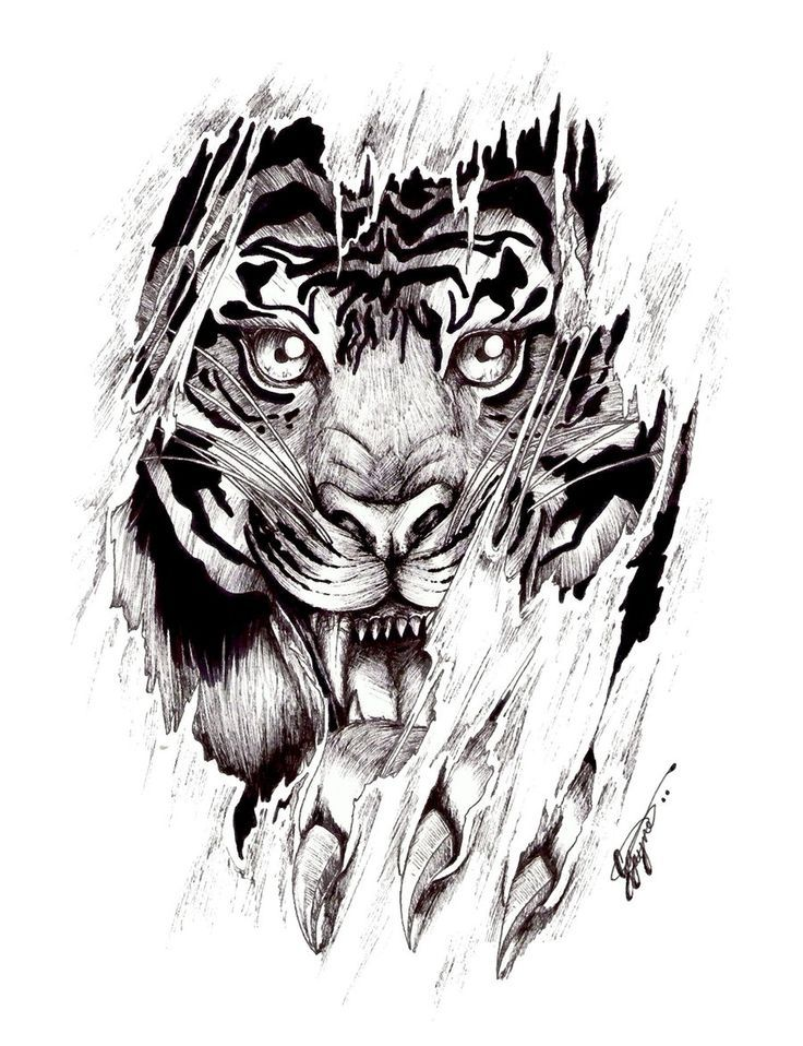 b65665e92 Ripped Skin Tiger Tattoo Design Idea | Art projects | Tiger tattoo ...