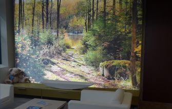 Verlicht fotobehang: spel van beeld en licht