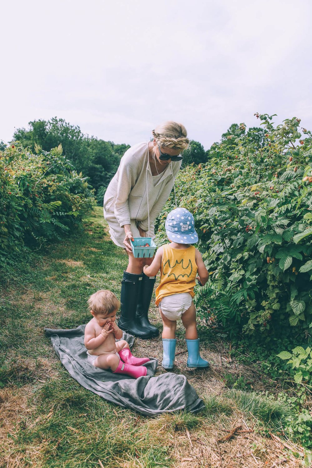 Berry Picking and Pie Making - Barefoot Blonde by Amber Fillerup Clark