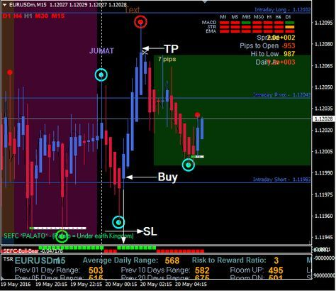Download Free Forex Fx Time Trading Action System Forex Trading