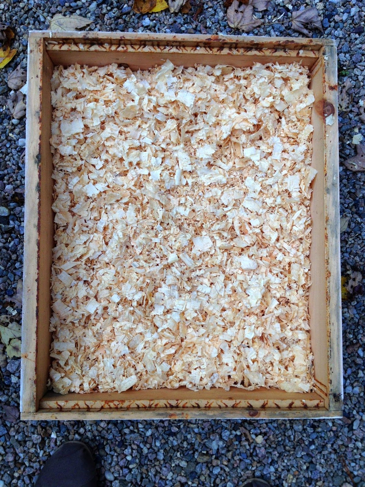 How to make a moisture quilt for a langstroth hive honey - Diy Winter Beehive Quilting Box To Help Prevent Moisture In The Hive