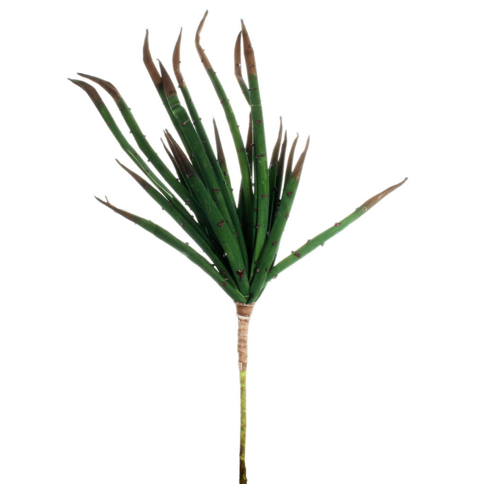 Green Yucca Pick by Ashland®