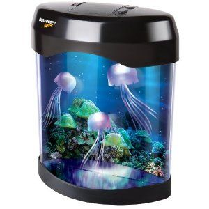 Amazon Com Discovery Kids Jelly Fish Lamp Toys Games Andrew