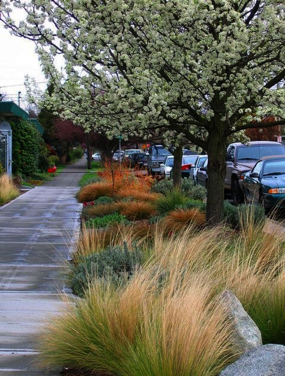 Landscape Gardening Ideas Pictures Landscape Architect Salary China Into Landscape Architecture S Landscape Architecture Landscape Landscape Architecture Jobs