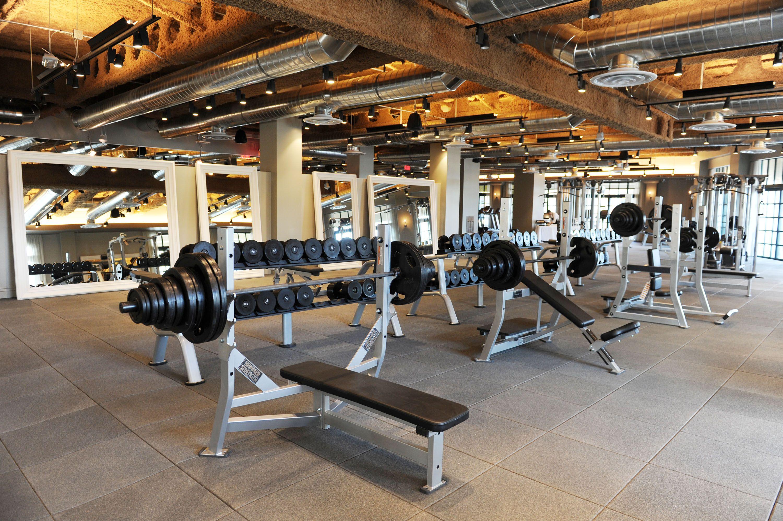 David Barton Gym Commercial Gym Design Gym Design Gym Interior